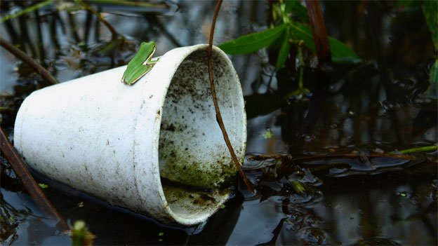 01.07.14news-flickr-styrofoam-cup-river-edit (1)