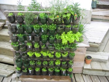 build-a-vertical-garden-from-plastic-bottles-vegetable-ideas-home-design.jpg
